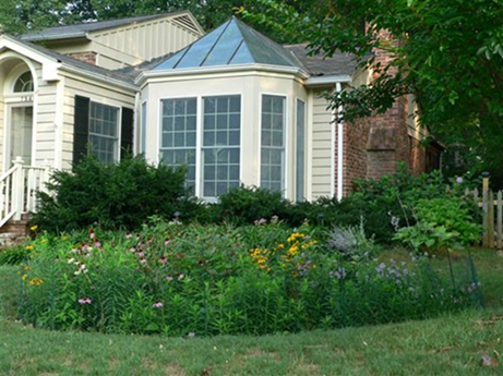Picture of a rain garden in the front lawn of a home.