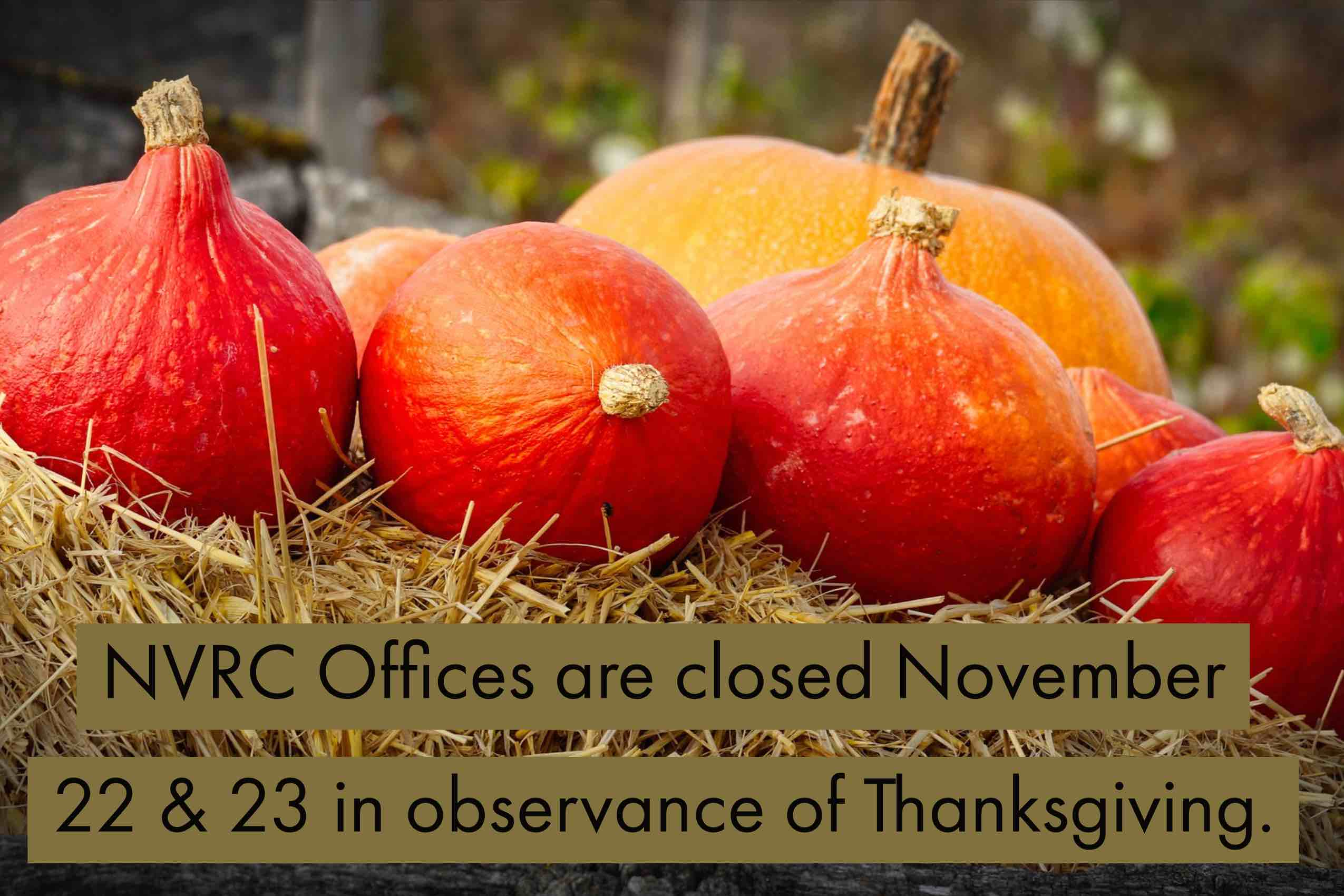 Thanksgiving Holiday Office Hours